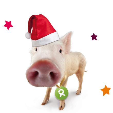 Schwein Weihnachten