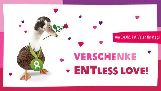 Valentinstags Geschenke, Die Gutes Tun.